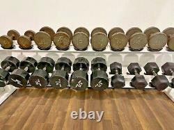 Iron Grip Dumbbell Set 12.5-100lbs Withicarian Rack Mixed Set